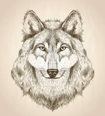Плакат Вектор эскиз иллюстрации вид спереди волк головы.