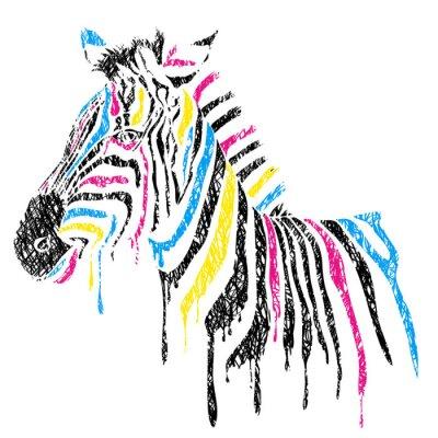 Плакат Вектор зебры с цветными полосами, стиле эскиза