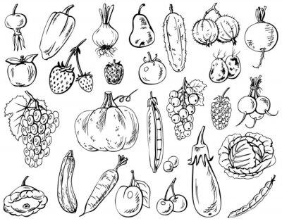 Плакат овощи, фрукты и ягоды