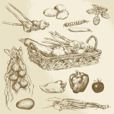 Плакат овощи - рисованной коллекция