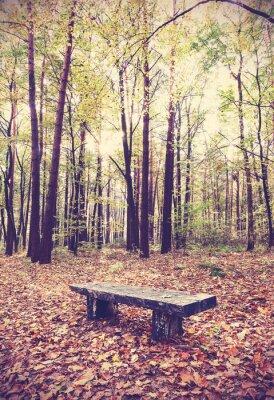 Плакат Vintage фильтруется картина скамейке в лесу.