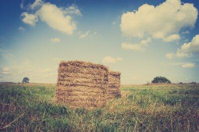 Плакат Урожай показывая пейзаж тюки соломы на стерне