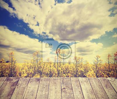 Плакат Урожай тонированное летом фон с поле изнасилования.