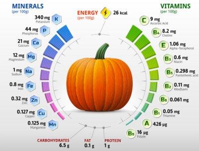 Плакат Витамины и минералы тыквы. Зимние игры в сквош питательные вещества
