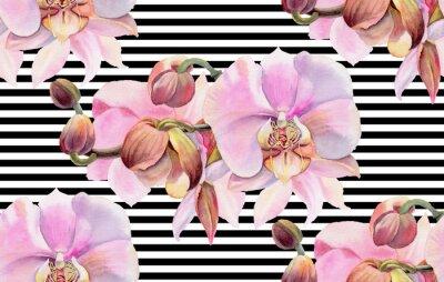 Плакат Акварельные цветы. Розовые орхидеи