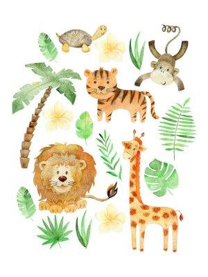 Плакат Watercolor safari arrangements.