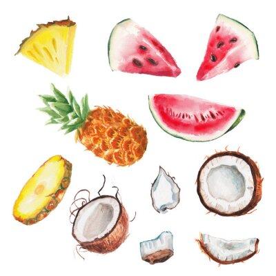 Плакат акварель летние фрукты установить