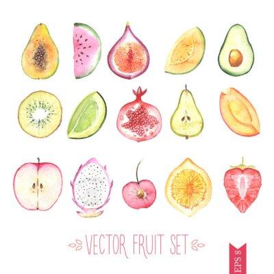 Плакат Акварель вектор завязывания плодов