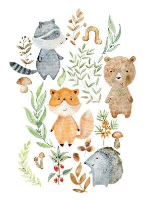 Плакат Watercolor woodland arrangements.