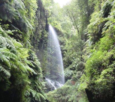 Плакат Водопад Cascada Лос-Тилос (Ла-Пальма, Канарские острова)