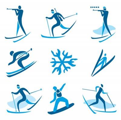 Плакат Зимний спорт символы