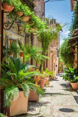 Плакат Прекрасный оформлены улице в маленьком городке в Италии, Умбрия