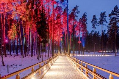 Плакат Деревянный мост в лесопарке. Ночные разноцветные огни.
