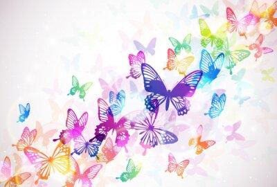 Плакат 蝶 々