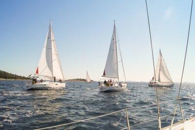 Плакат Яхта парусный спорт на воде вдоль берега
