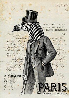 Плакат Зебра человек