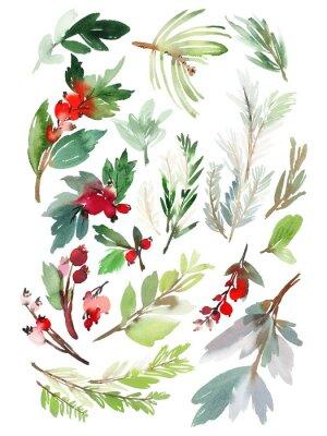 Наклейка Набор рождественских цветочных элементов на белом фоне