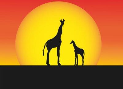 Наклейка Африканские жирафы в силуэт пейзаж