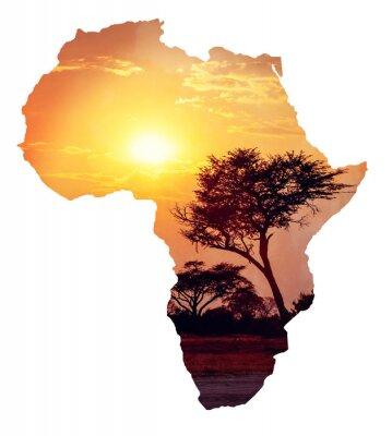 Наклейка Африканский закат с акации, карта Африки концепции