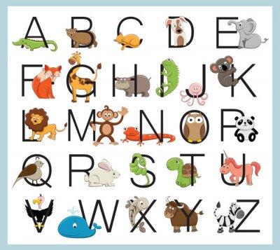 Наклейка Алфавит животных