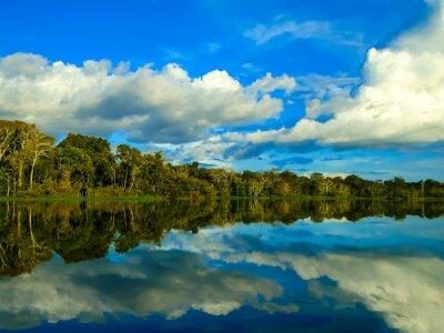 Наклейка Река Амазонка