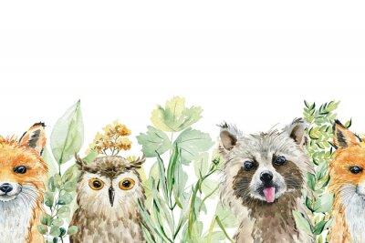 Наклейка Animals watercolor illustration