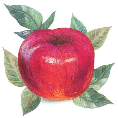 Наклейка Apple, на белом с отсечения путь
