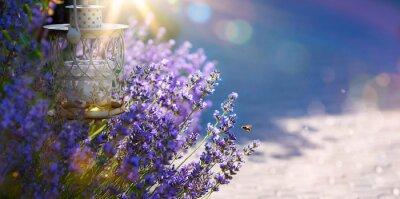 Наклейка искусство Летом или весной красивый сад с цветами лаванды