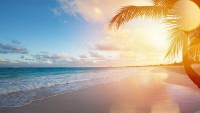 Наклейка Искусство Летний отдых океанский пляж