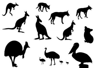 Наклейка Австралийских животных силуэт