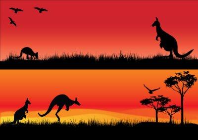 Наклейка Австралийский кенгуру на закате