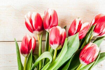 Наклейка Фон для поздравлений, поздравительные открытки. Свежие весенние тюльпаны цветы, на белом деревянный фон вид сверху Копия пространство