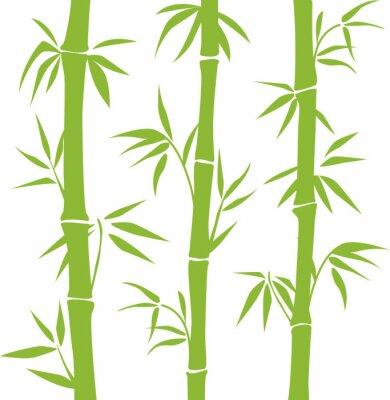 Наклейка Бамбук
