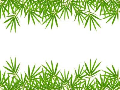 Наклейка листья бамбука на белом фоне