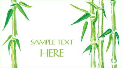 Наклейка бамбуковый фон вектор