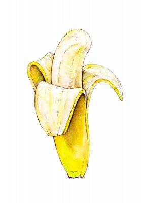 Наклейка Банан, изолированных на белом фоне. Акварель красочные иллюстрации. Тропические фрукты. Ручная работа