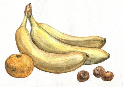 Наклейка Банан, мандарин и фундука. Акварельная живопись