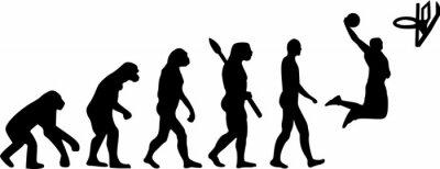 Наклейка Баскетбол Эволюция
