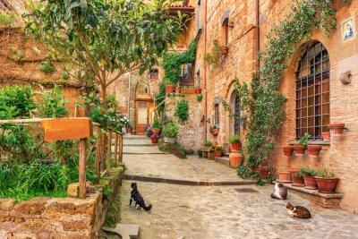 Наклейка Красивая аллея в старой части города Тоскана