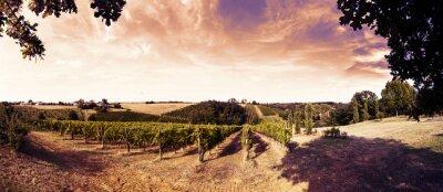 Наклейка красивый закат над виноградниками в Тоскане