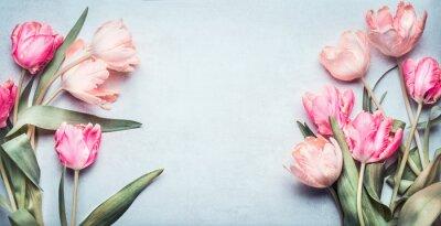 Наклейка Красивые тюльпаны в розовый пастельный цвет на светло-голубом фоне, вид сверху, рамка, границы. Прекрасная открытка с тюльпанами для Дня матери, свадьба или счастливое событие