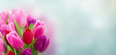 Наклейка букет из розовых и фиолетовых цветов тюльпанов