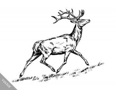 Наклейка кисть чернил рисовать вектор оленей иллюстрации