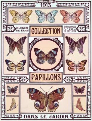 Наклейка Коллекция бабочки