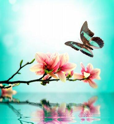 Наклейка Бабочка и цветок магнолии