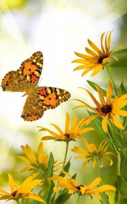 Наклейка бабочки и цветы в саду крупным планом