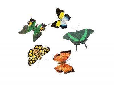 Наклейка дизайн бабочки