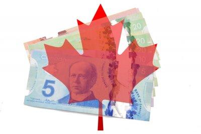 Наклейка Канадский кленовый лист с долларами на белом фоне
