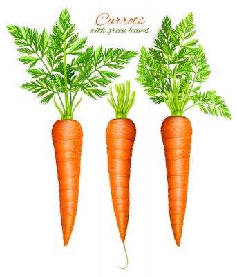 Наклейка Морковь с листьями
