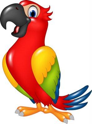 Наклейка Мультфильм смешной попугай на белом фоне